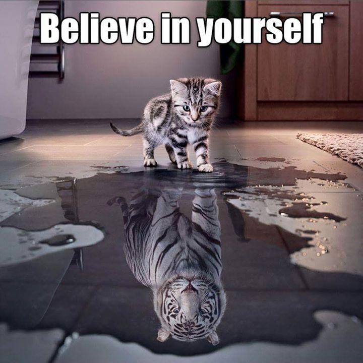 Verjemi vase
